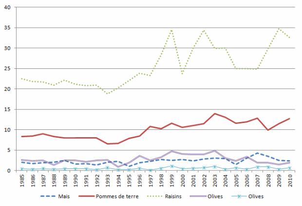 Evolution en 25 ans des rendements agricoles par hectare dans la region de Madrid