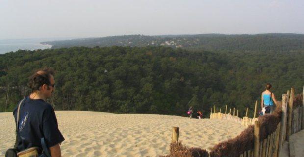 La forêt des Landes vue depuis la dune de Pyla. A gauche, l'Ocean