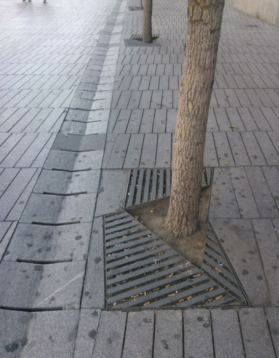 Un arbre avec les racines vraiment en terre, sur les marges de la place. La grille est plutot restrainte en surface...
